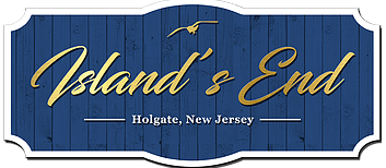new listings lbi nj