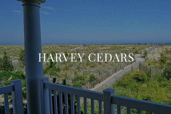 harvery cedars nj real estate